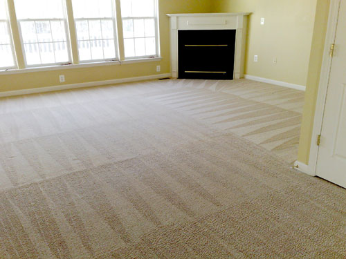 Carpet Cleaning Newcastle and Hunter Valley
